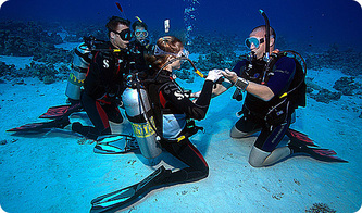 Isle of Wight Scuba Diving and training courses